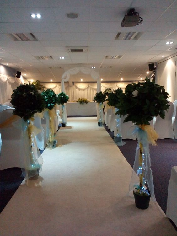 Bay Trees with Lights and any Colour Sash or Roses